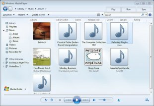 windows media player file types